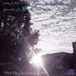 Wind Of Buri - Cities In The Clouds 07